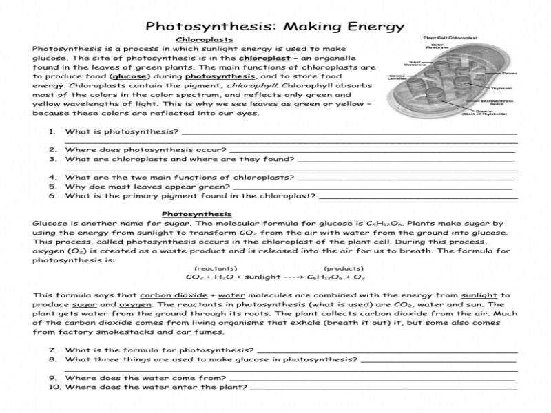 synthesis Worksheet