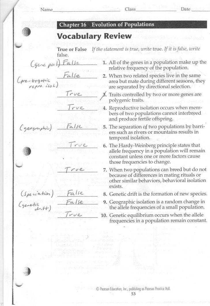 Medium Size of Worksheet photosynthesis & Cellular Respiration Worksheet Answers Plant Cell Labeling Worksheet Answers
