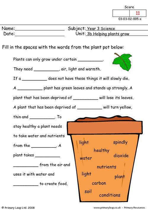 PrimaryLeap How do plants grow Worksheet
