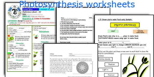 synthesis worksheets