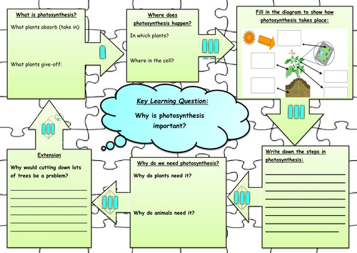 synthesis jigsaw worksheet by annabelbianca Teaching Resources Tes