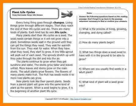 plant life cycle worksheet Gr2 Wk4 Plant Life Cycles