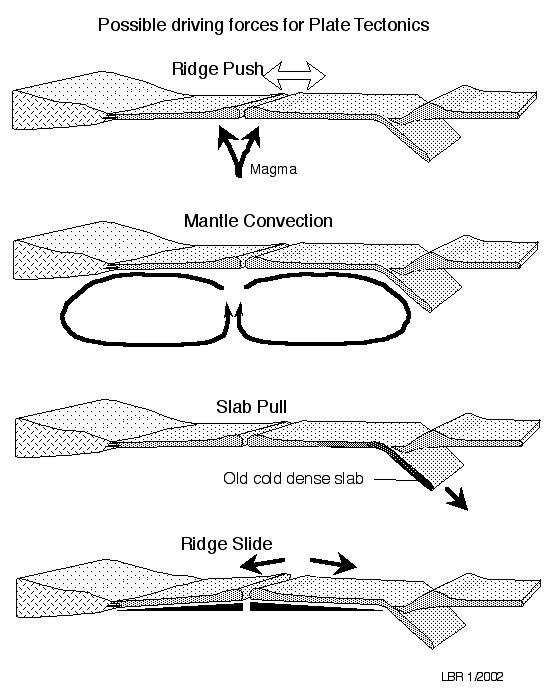 A diagram showing possible driving forces for plate tectonics