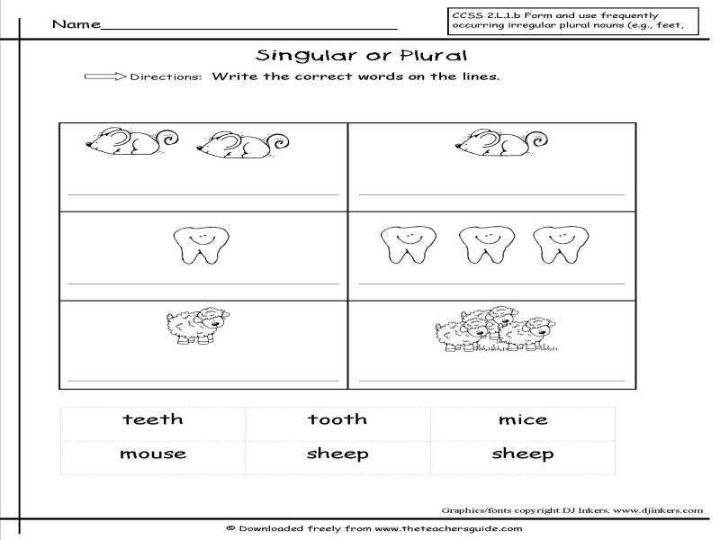 Singular And Plural Nouns Worksheets From The Teacher s Guide