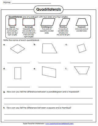 Quadrilaterals Worksheet Polygon Printable Worksheets