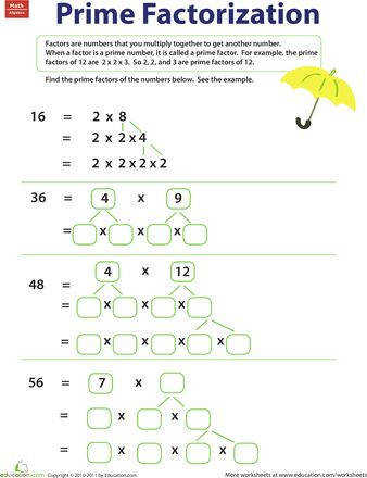 factor trees Pinterest