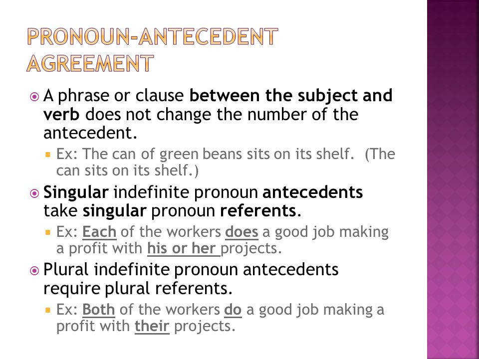 Pronoun Antecedent Agreement Worksheet