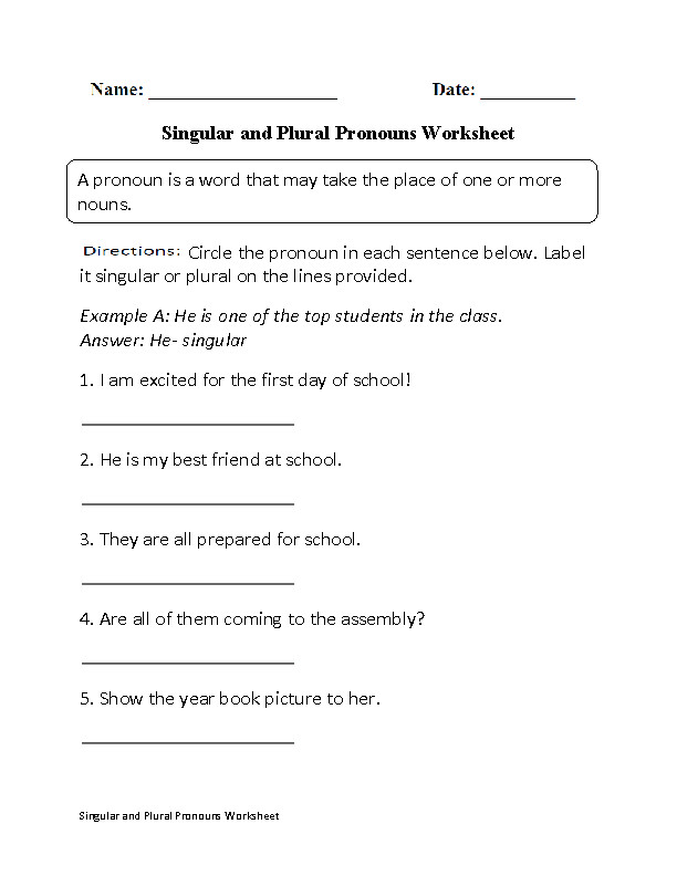 Fun with Singular and Plural Pronouns Worksheet