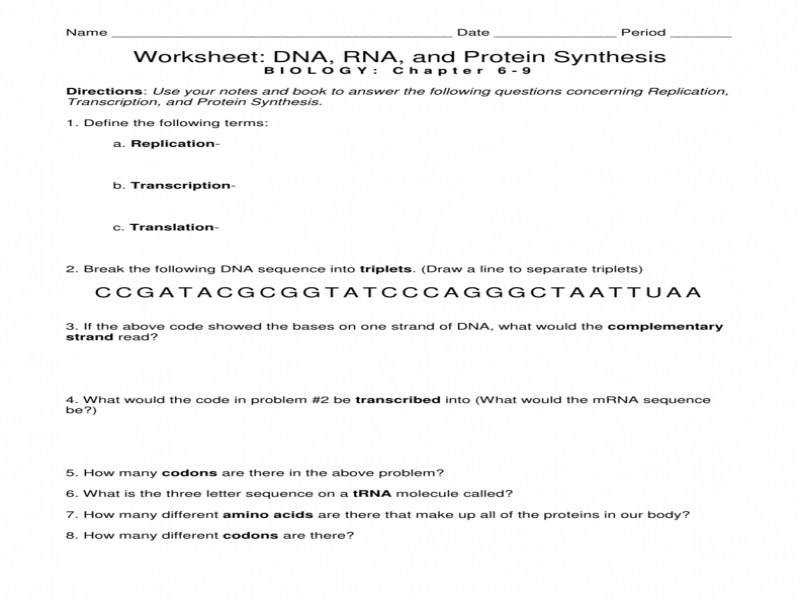 Worksheet Dna Rna and Protein Synthesis
