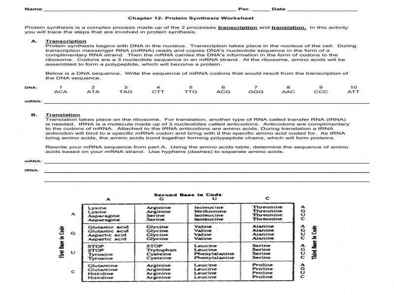 35 123 Dna Replication Worksheet Answers - Free Worksheet ...