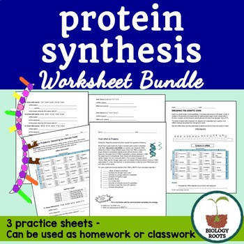 Protein Synthesis Worksheet Bundle