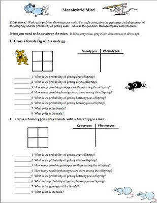 worksheet. Punnett Square Worksheet Answer Key. Grass Fedjp ...