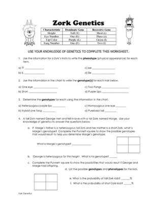 Punnett Square Worksheet Answers Pre munity Printables Worksheets