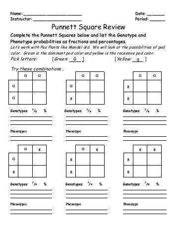 pictures blank punnett square worksheet roostanama. Black Bedroom Furniture Sets. Home Design Ideas