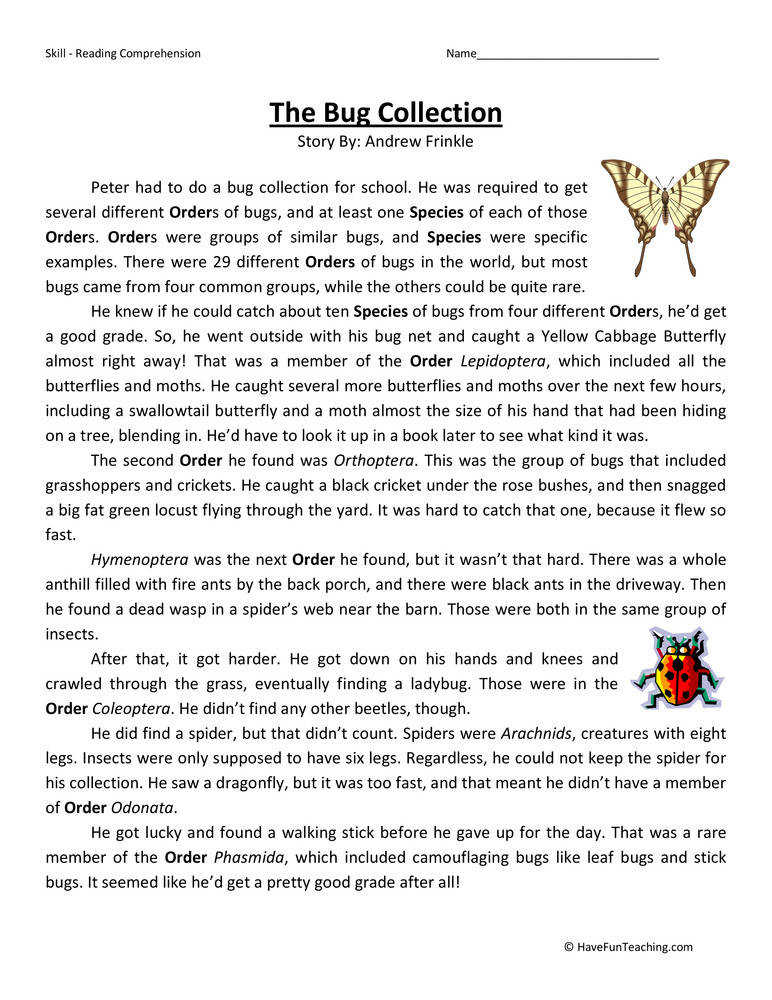Bug Collection Fifth Grade Reading prehension Worksheet