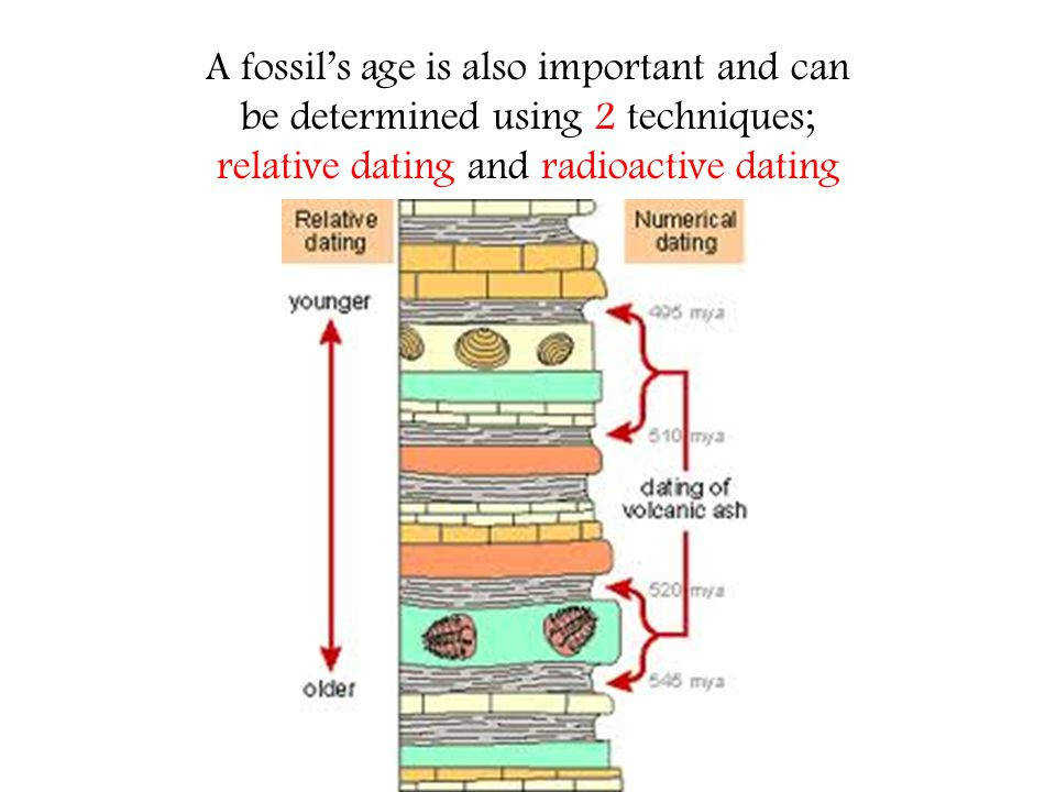 Radiometric dating exercises