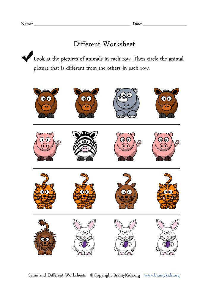 Same and Different Worksheets Finding Different Animal