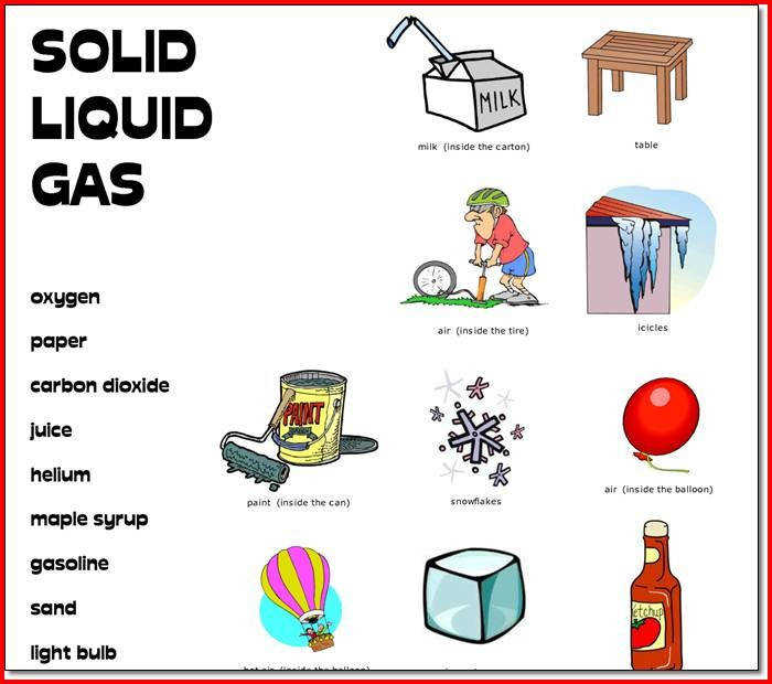 Fun science worksheets for 4th grade