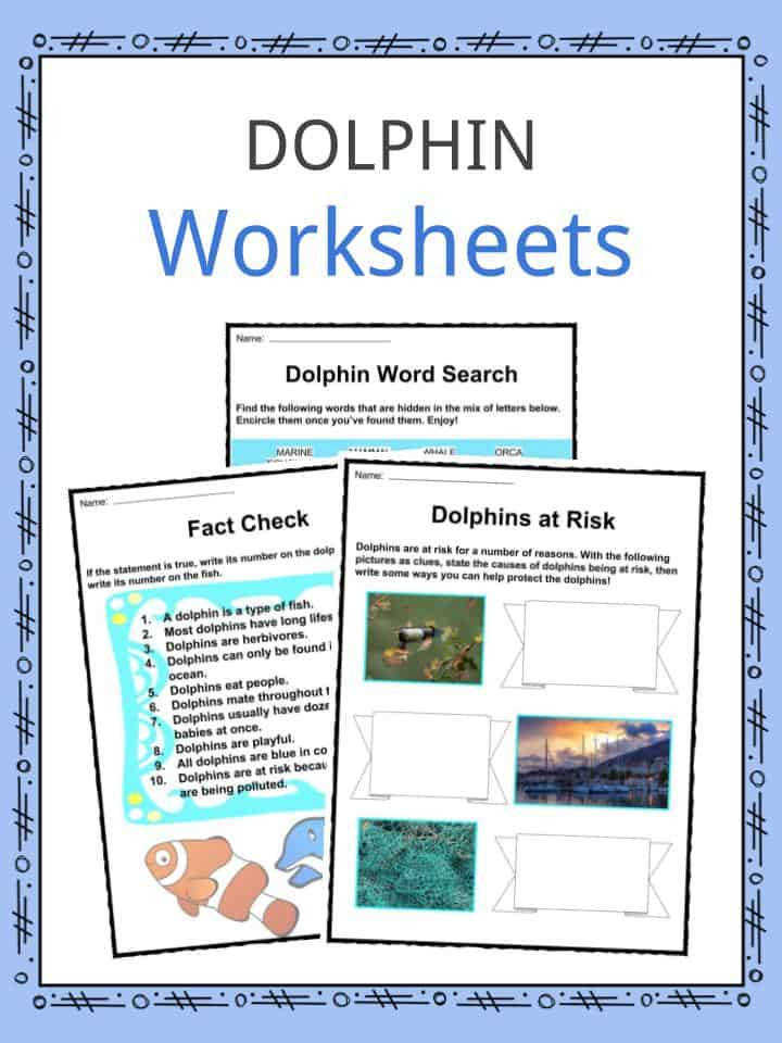 Dolphin Facts & Worksheets