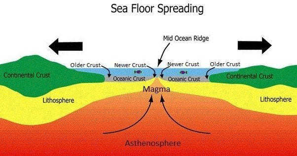 Sea Floor Spreading Picture Sea Floor Spreading Main Qimg Classy There Are Various Evidences Support The