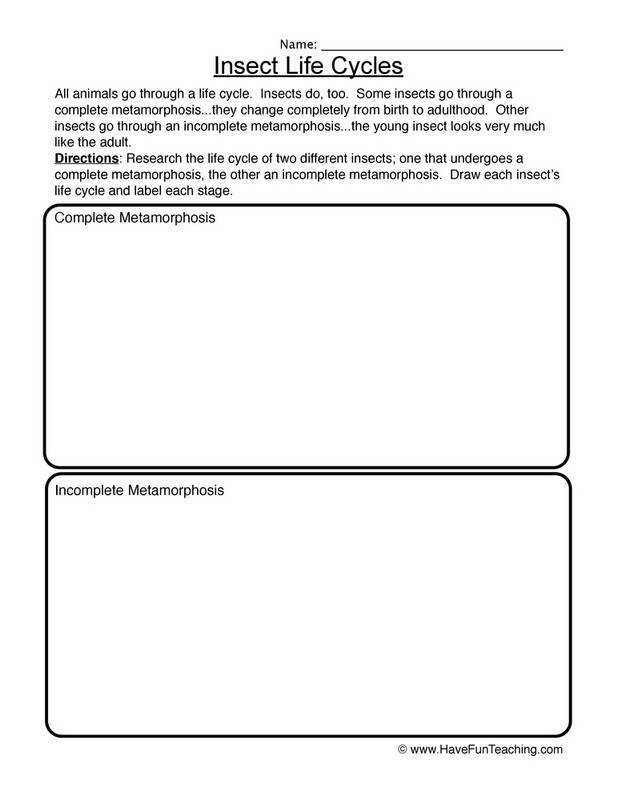 Full Size of Worksheet solving Exponential And Logarithmic Equations Worksheet With Answers Grade 3 School