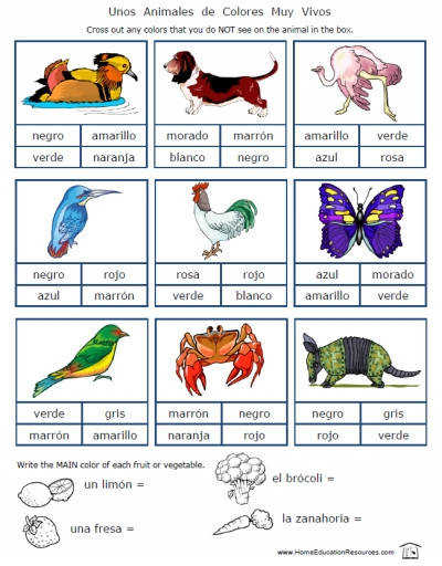 Spanish Color Worksheets for Beginners