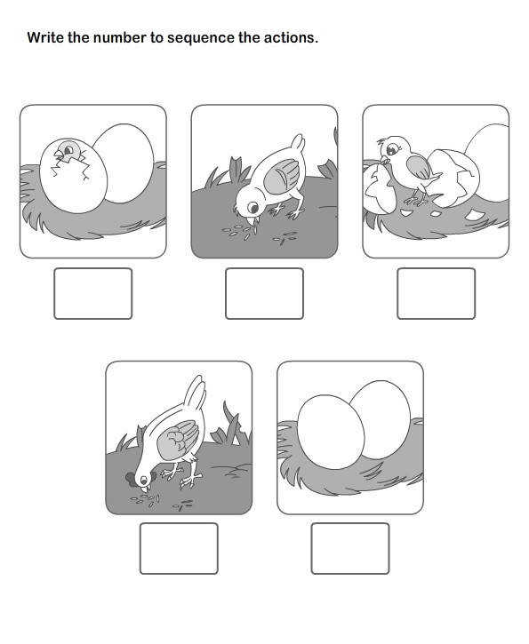 Sequence Worksheets Kindergarten Worksheets