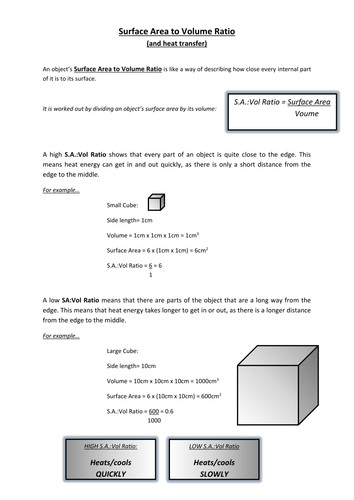 Surface Area to Volume Ratio Worksheet by mtl78 Teaching Resources Tes