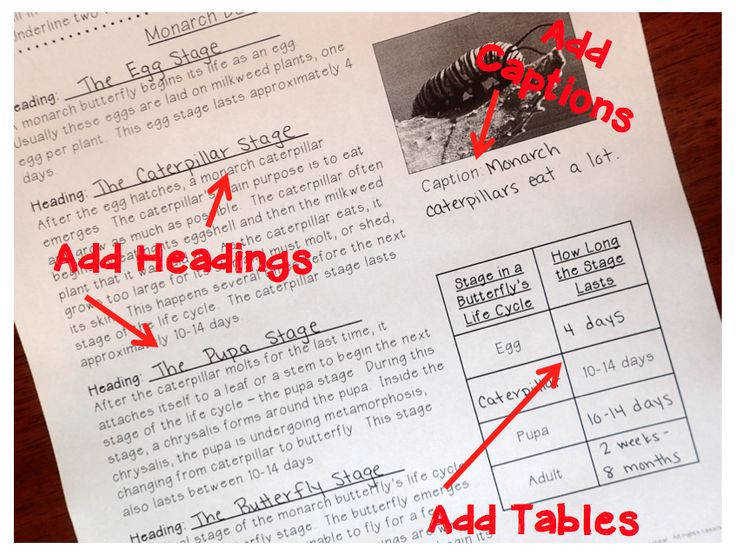 Have students use higher level thinking skills by adding appropriate text features to provided text
