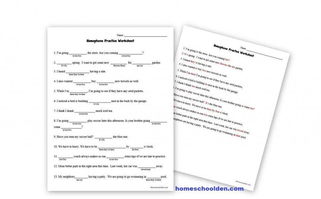 Homophone Practice Worksheet there their they re our are its it s