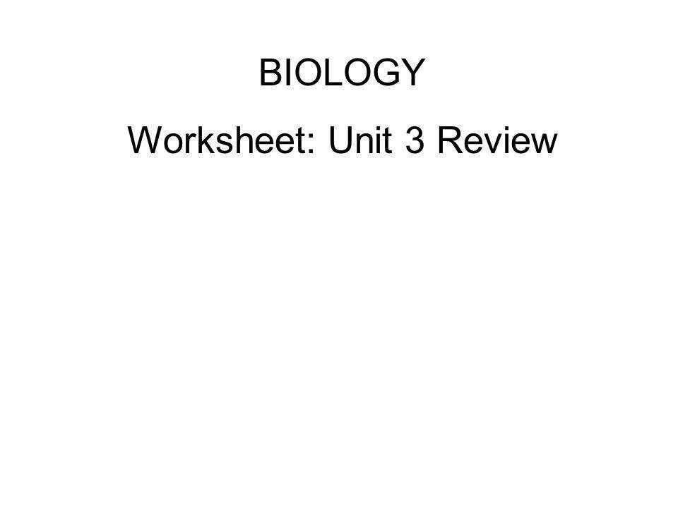 Worksheet Unit 3 Review