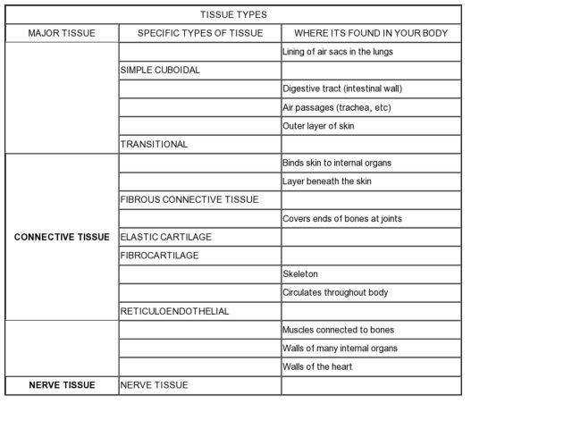 Full Size of Worksheet topographic Map Reading Worksheet Critical Lens Worksheet Essay Template How To