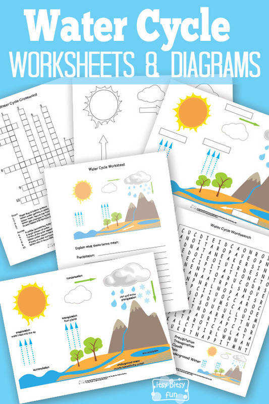 Free Printable Water Cycle Worksheets and Diagrams