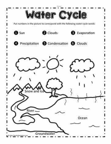 Label the Water Cycle Water cycle worksheets