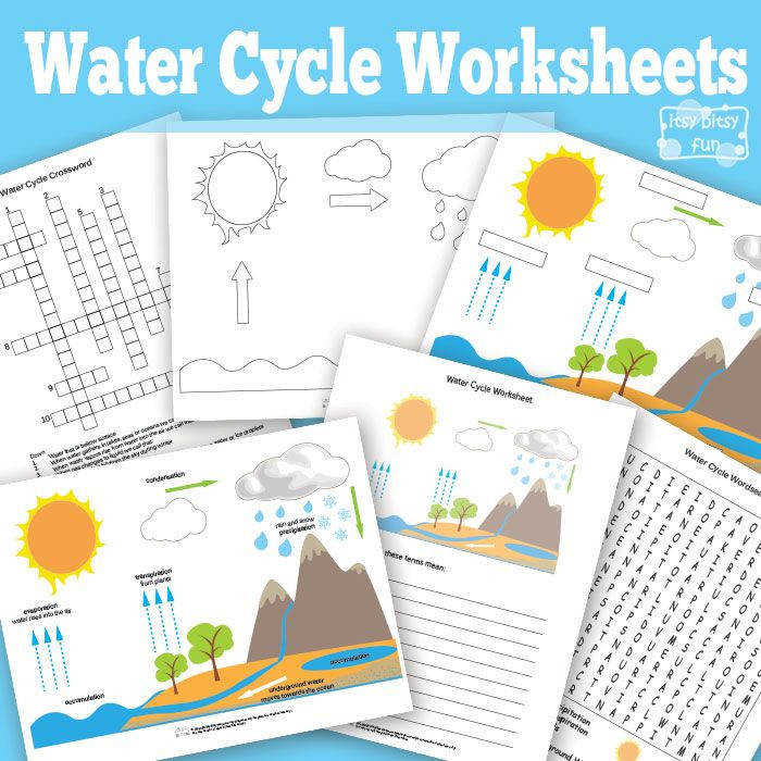 Free Printable Water Cycle Worksheet