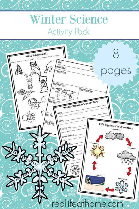 Free printable eight page winter worksheets and printables packet which includes many items needed for some