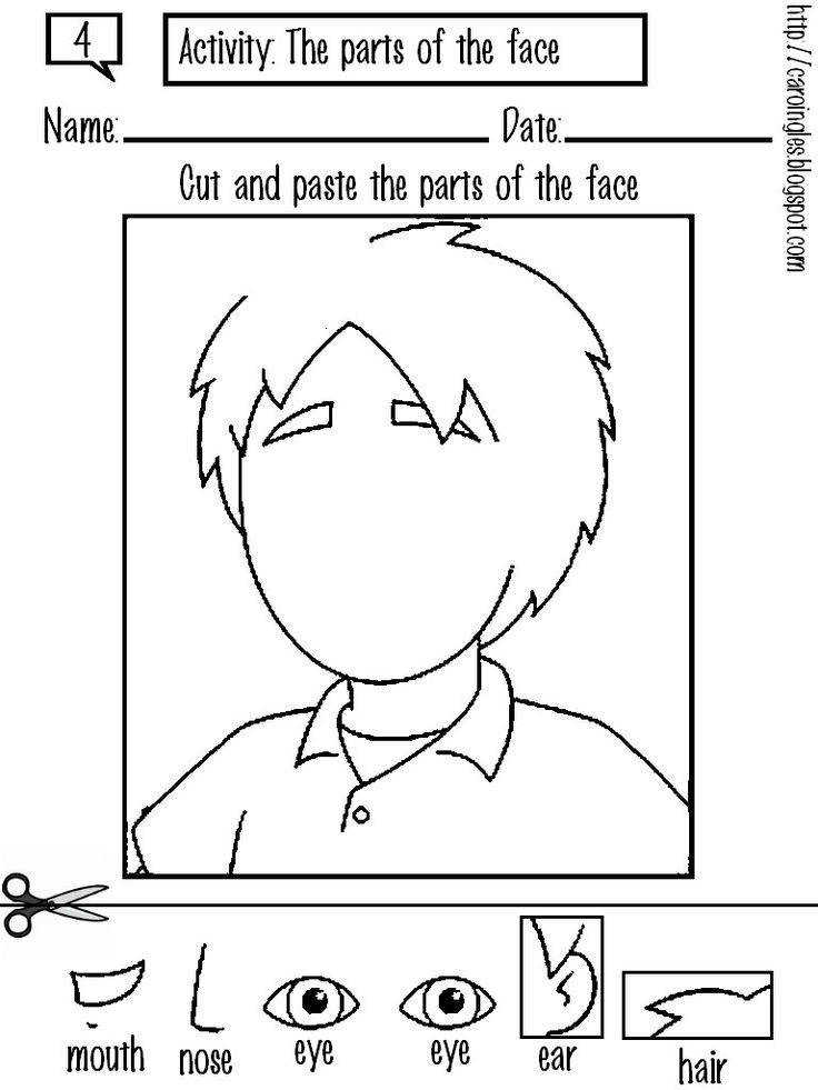 Convert to use with senses Face Body Parts Worksheets Cool preschool worksheets for kids