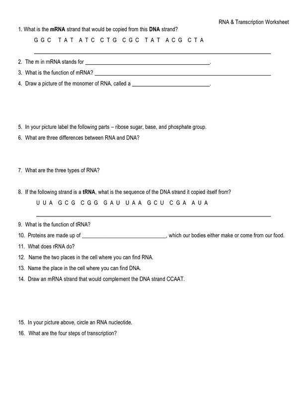 Full Size of Worksheet graphing Inequalities A Number Line Worksheet Writing Formulas From Names